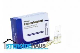 Testosterone Enanthate 250 - Aburaihan Iran