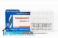 Testosterone E - Balkan Pharmaceuticals