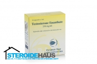 Testosterone Enanthate - 250mg/ml (10amp) - Primus Ray Laboratories